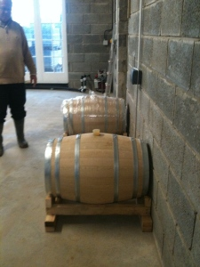 savagnin in barrel