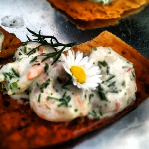 prawns with dill and mayo